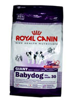 Royal Canin-Giant Baby Dog